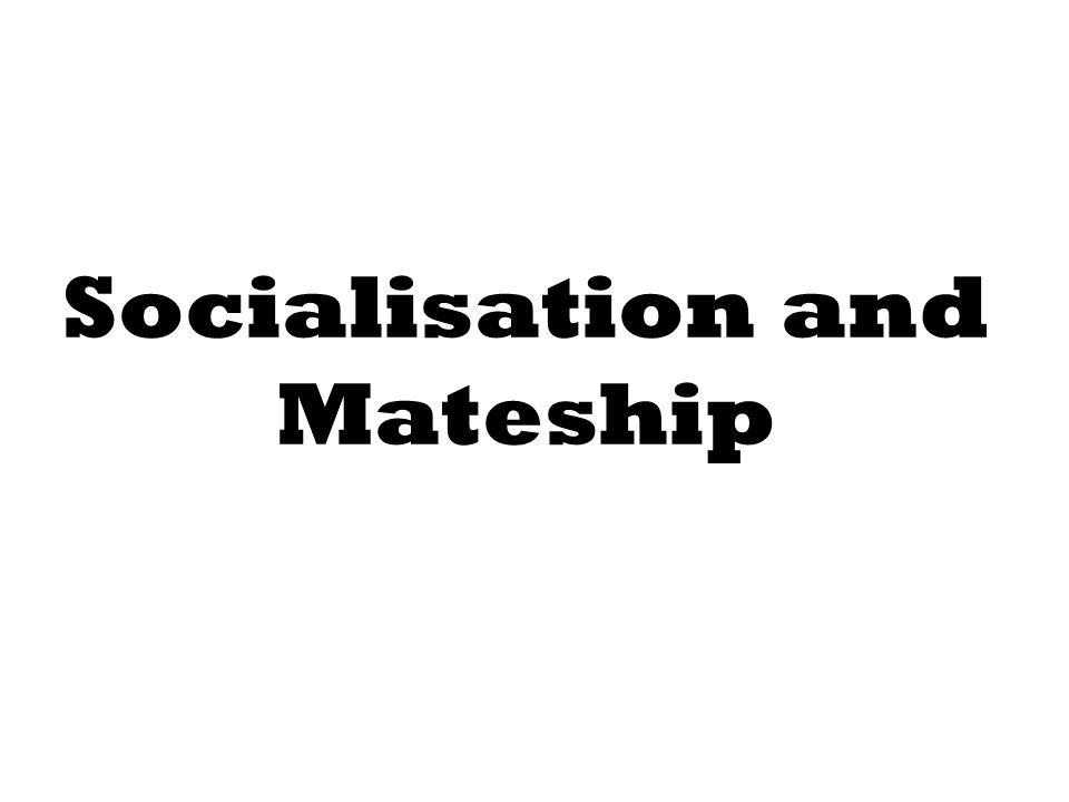 Socialisation and Mateship