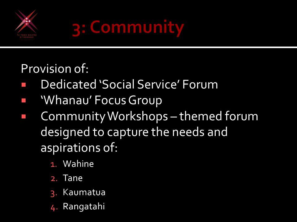 Provision of:  Dedicated 'Social Service' Forum  'Whanau' Focus Group  Community Workshops – themed forum designed to capture the needs and aspirations of: 1.Wahine 2.Tane 3.Kaumatua 4.Rangatahi