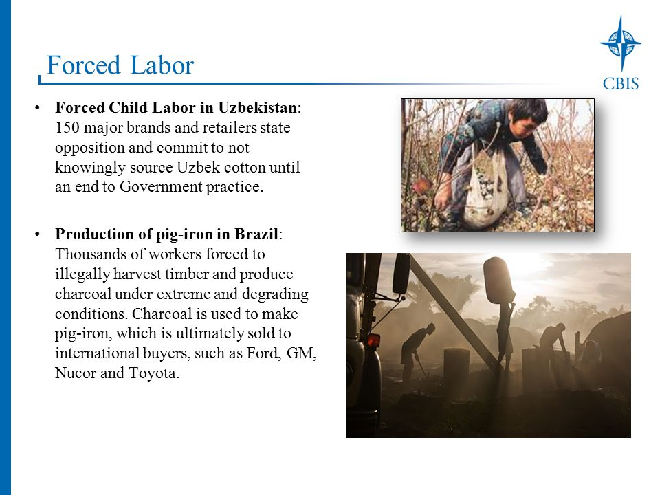 Forced Labor Forced Child Labor in Uzbekistan: 150 major brands and retailers state opposition and commit to not knowingly source Uzbek cotton until an end to Government practice.