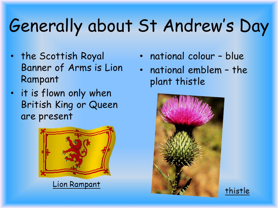 QUIZ 2.Who is St Andrew? St Andrew is the patron saint of Scotland.