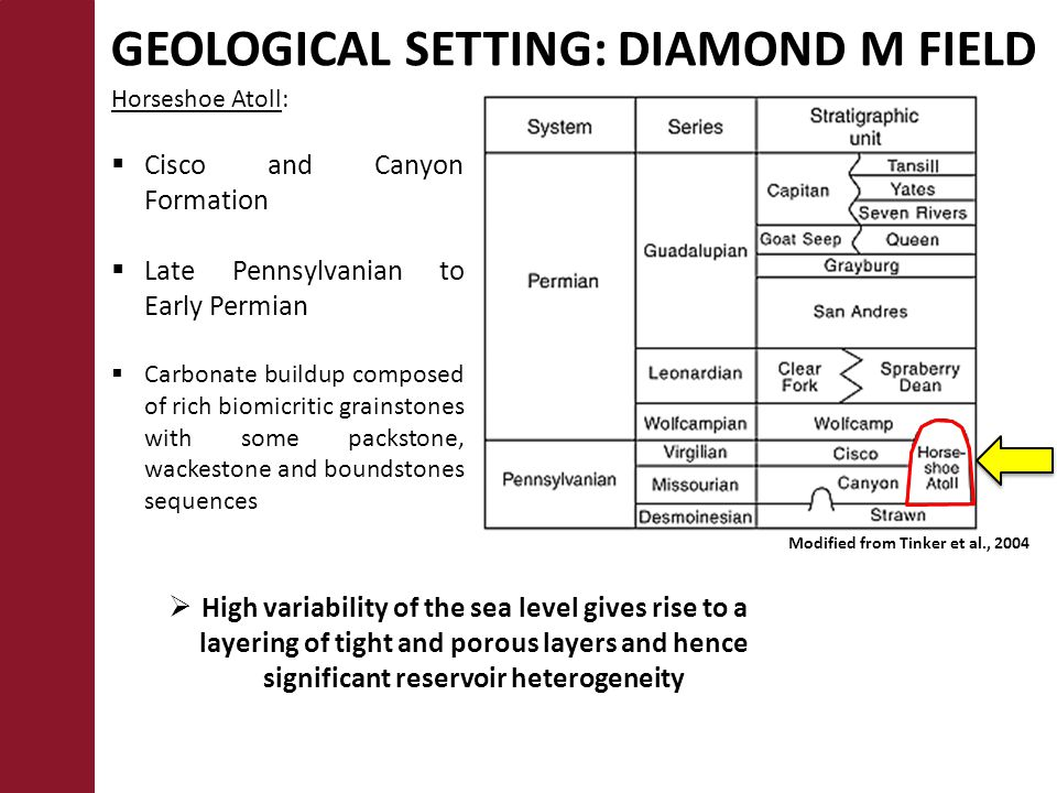 GEOLOGICAL SETTING: DIAMOND M FIELD Horseshoe Atoll:  Cisco and Canyon Formation  Late Pennsylvanian to Early Permian  Carbonate buildup composed of rich biomicritic grainstones with some packstone, wackestone and boundstones sequences  High variability of the sea level gives rise to a layering of tight and porous layers and hence significant reservoir heterogeneity Modified from Tinker et al., 2004