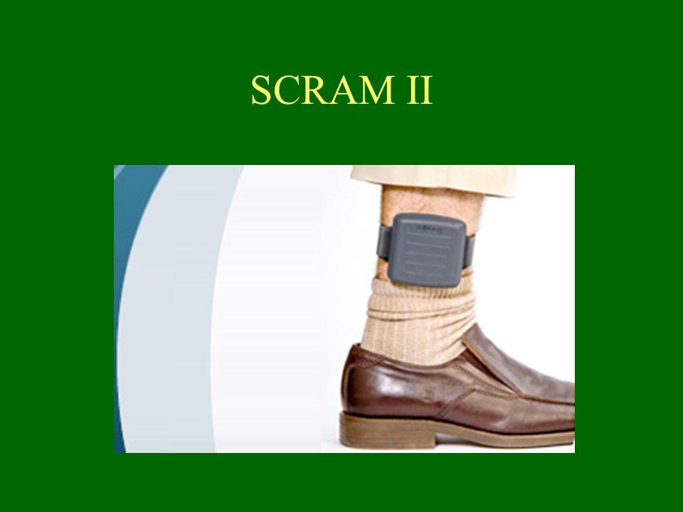 SCRAM II