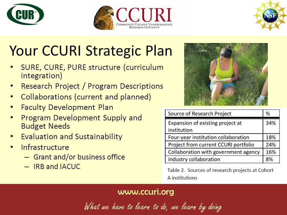 www.ccuri.org What we have to learn to do, we learn by doing Unsustainable Elements Paying faculty stipends and release time to teach Student stipends and summer salaries Student emigration to obtain their UR experience – keep in in house Short-term or one-time research questions / programs / projects Instrumentation and Equipment HEAVY Disconnected from regular academic programming BARRIERS.