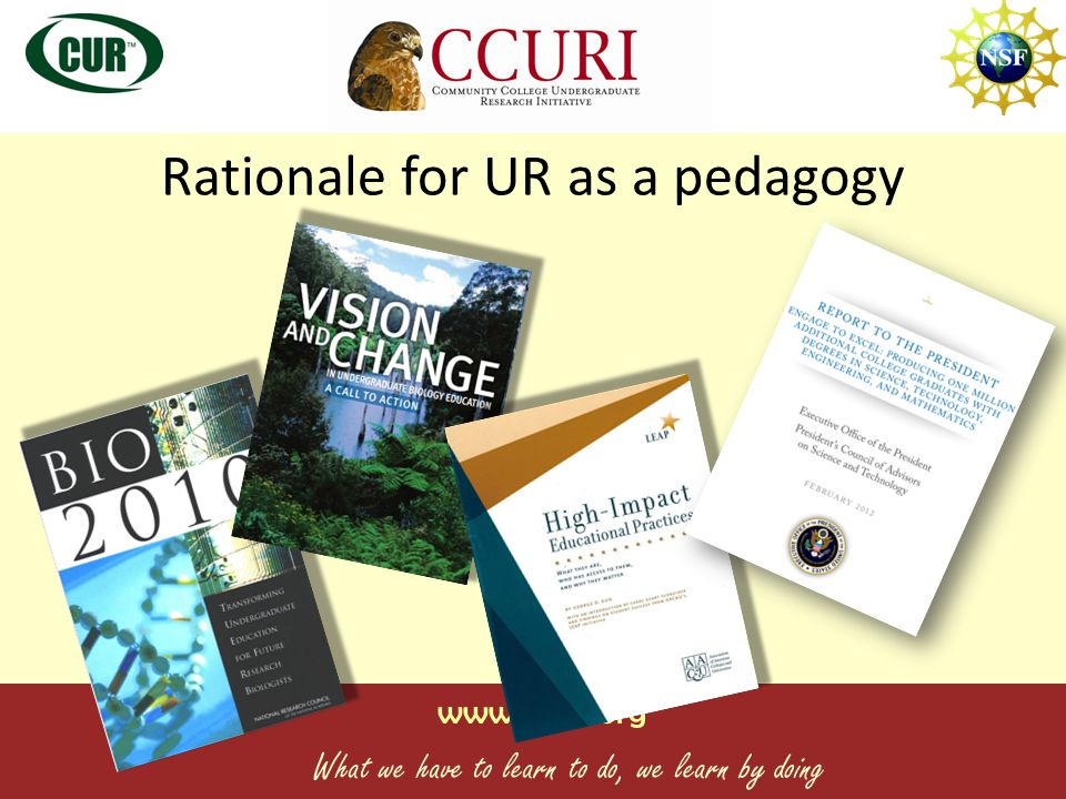 www.ccuri.org What we have to learn to do, we learn by doing Rationale for UR as a pedagogy