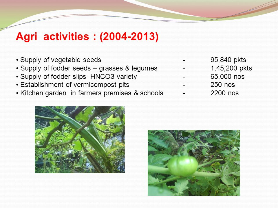 Agri activities : (2004-2013) Supply of vegetable seeds-95,840 pkts Supply of fodder seeds – grasses & legumes-1,45,200 pkts Supply of fodder slips HNCO3 variety-65,000 nos Establishment of vermicompost pits-250 nos Kitchen garden in farmers premises & schools-2200 nos