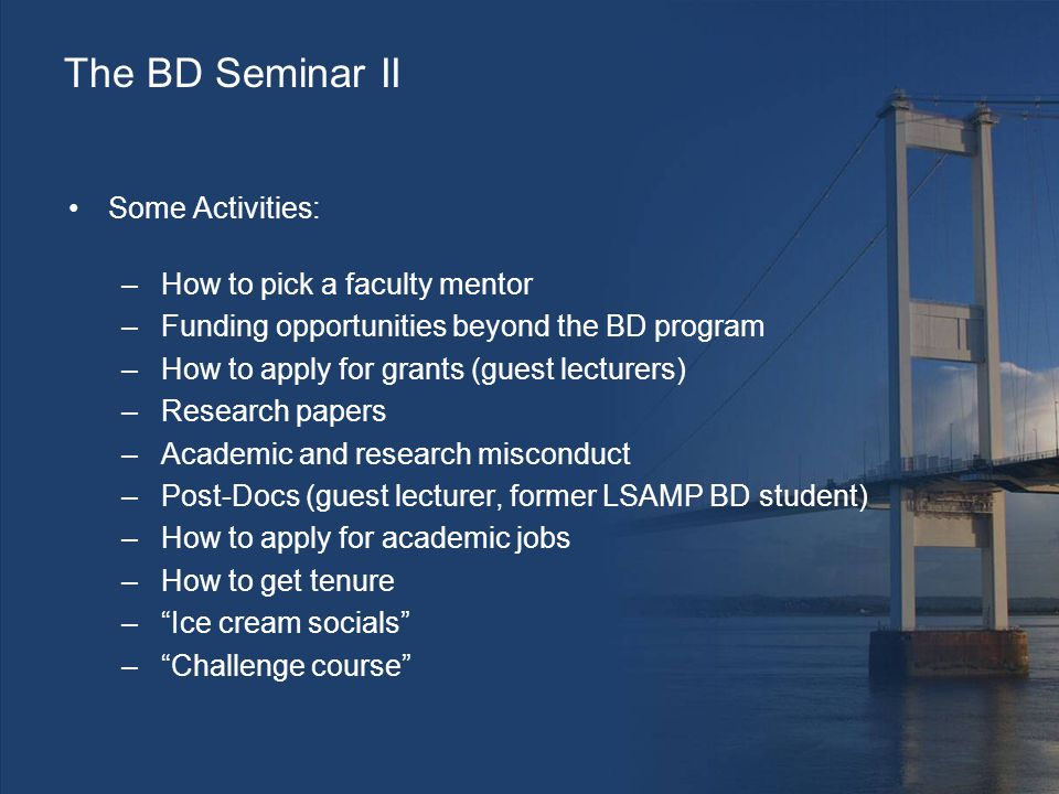 The BD Seminar II Some Activities: –How to pick a faculty mentor –Funding opportunities beyond the BD program –How to apply for grants (guest lecturers) –Research papers –Academic and research misconduct –Post-Docs (guest lecturer, former LSAMP BD student) –How to apply for academic jobs –How to get tenure – Ice cream socials – Challenge course