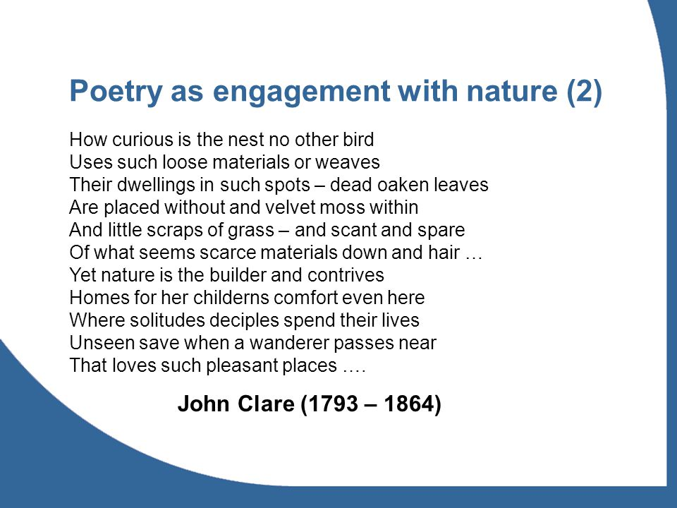 Poetry as engagement with nature (2) How curious is the nest no other bird Uses such loose materials or weaves Their dwellings in such spots – dead oaken leaves Are placed without and velvet moss within And little scraps of grass – and scant and spare Of what seems scarce materials down and hair … Yet nature is the builder and contrives Homes for her childerns comfort even here Where solitudes deciples spend their lives Unseen save when a wanderer passes near That loves such pleasant places ….
