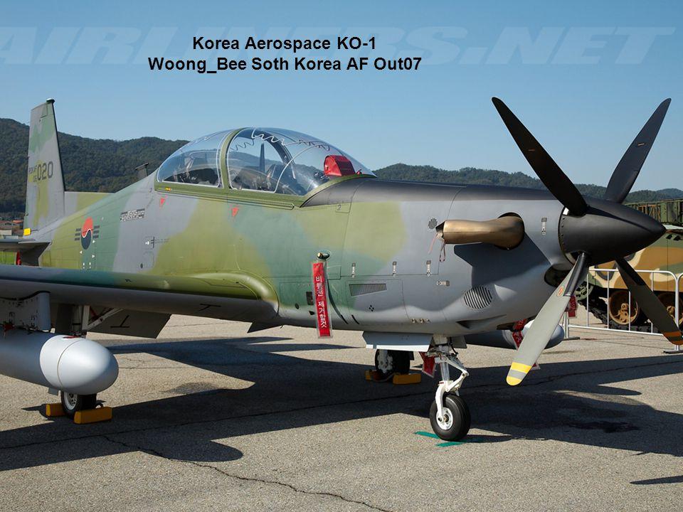 Korea Aerospace KO-1 Woong_Bee Soth Korea AF Out07