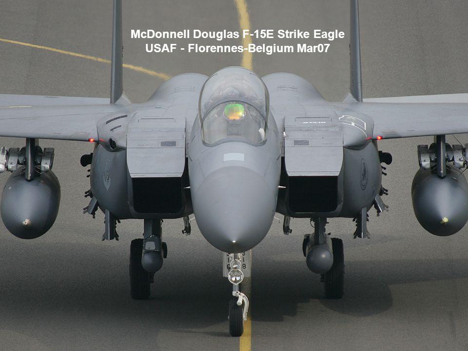 McDonnell Douglas F-15E Strike Eagle USAF - Florennes-Belgium Mar07