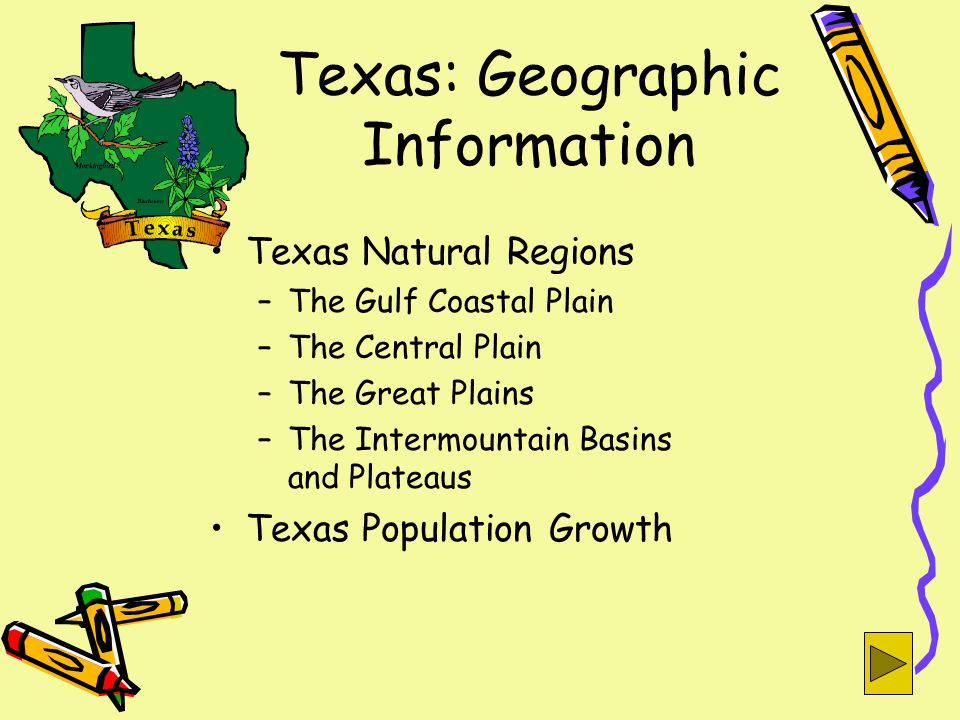 Texas: Geographic Information Texas Natural Regions –The Gulf Coastal Plain –The Central Plain –The Great Plains –The Intermountain Basins and Plateaus Texas Population Growth