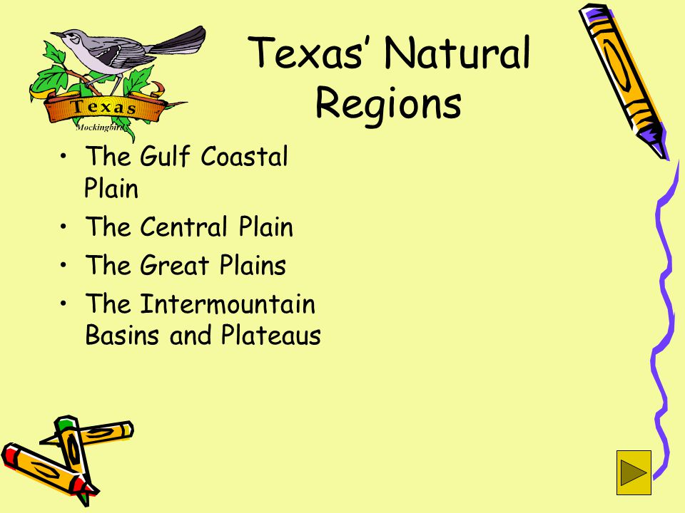 Texas' Natural Regions The Gulf Coastal Plain The Central Plain The Great Plains The Intermountain Basins and Plateaus