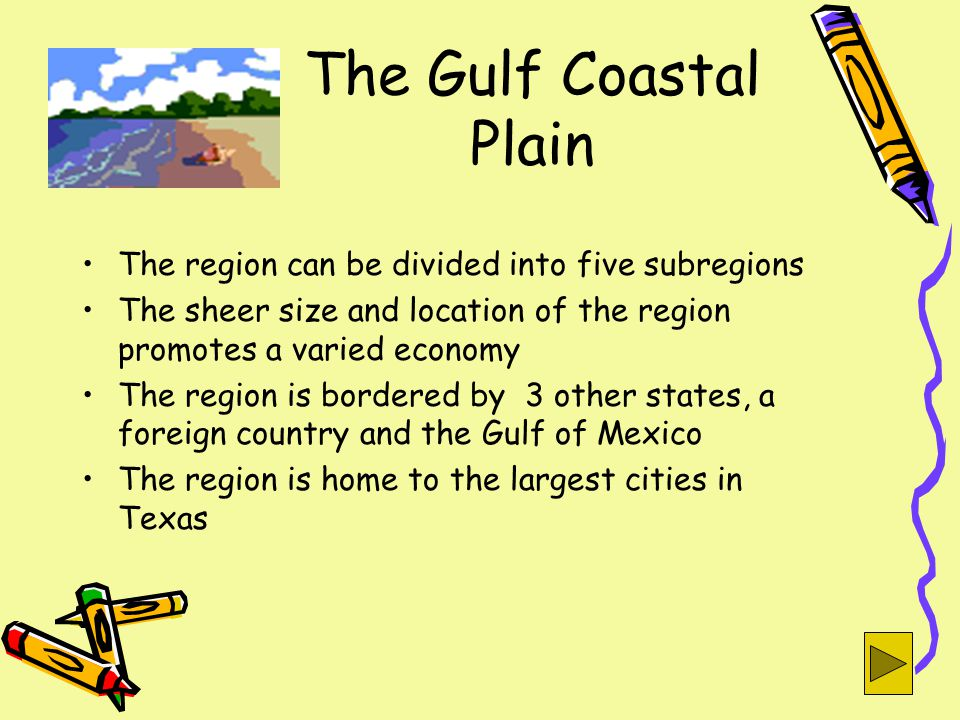 The Gulf Coastal Plain The region can be divided into five subregions The sheer size and location of the region promotes a varied economy The region is bordered by 3 other states, a foreign country and the Gulf of Mexico The region is home to the largest cities in Texas