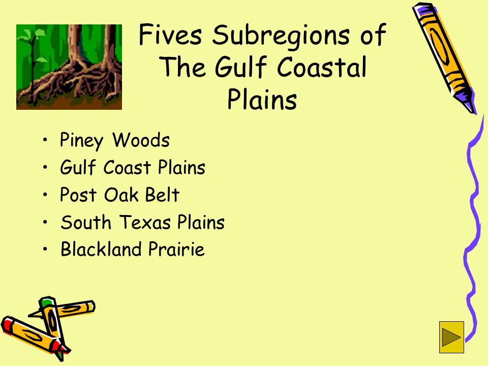 Fives Subregions of The Gulf Coastal Plains Piney Woods Gulf Coast Plains Post Oak Belt South Texas Plains Blackland Prairie