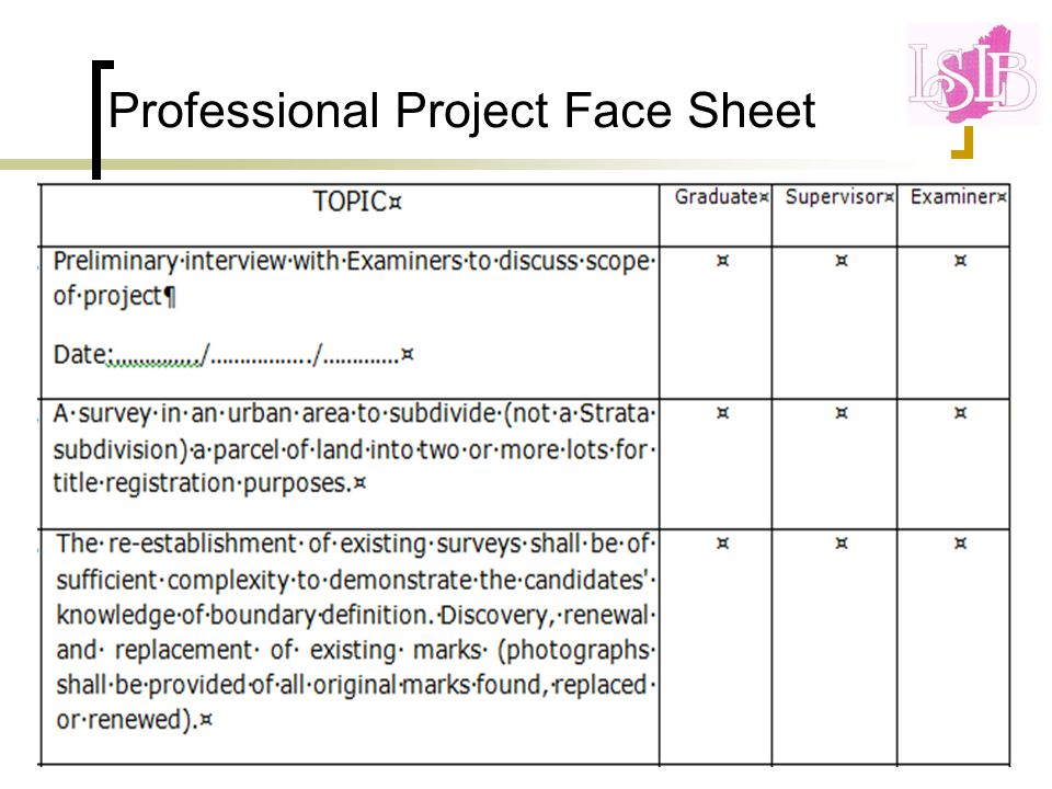 Professional Project Face Sheet