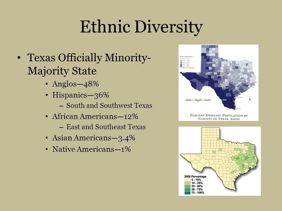 Ethnic Diversity Texas Officially Minority- Majority State Anglos—48% Hispanics—36% – South and Southwest Texas African Americans—12% – East and Southeast Texas Asian Americans—3.4% Native Americans—1%