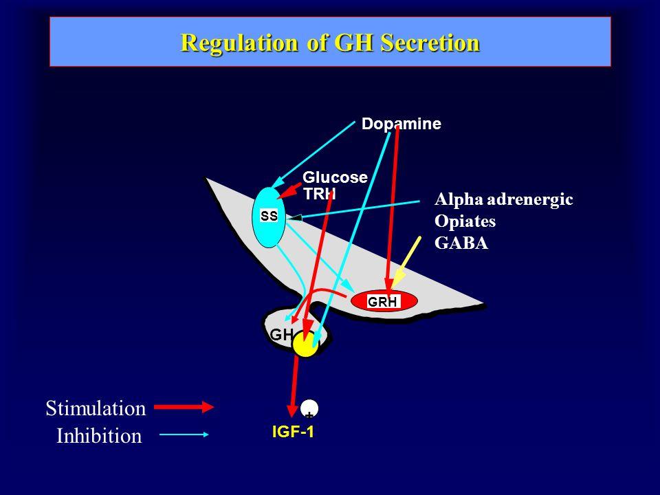 Regulation of GH Secretion SS GRH GH IGF-1 + TRH Inhibition Stimulation Glucose Dopamine Alpha adrenergic Opiates GABA