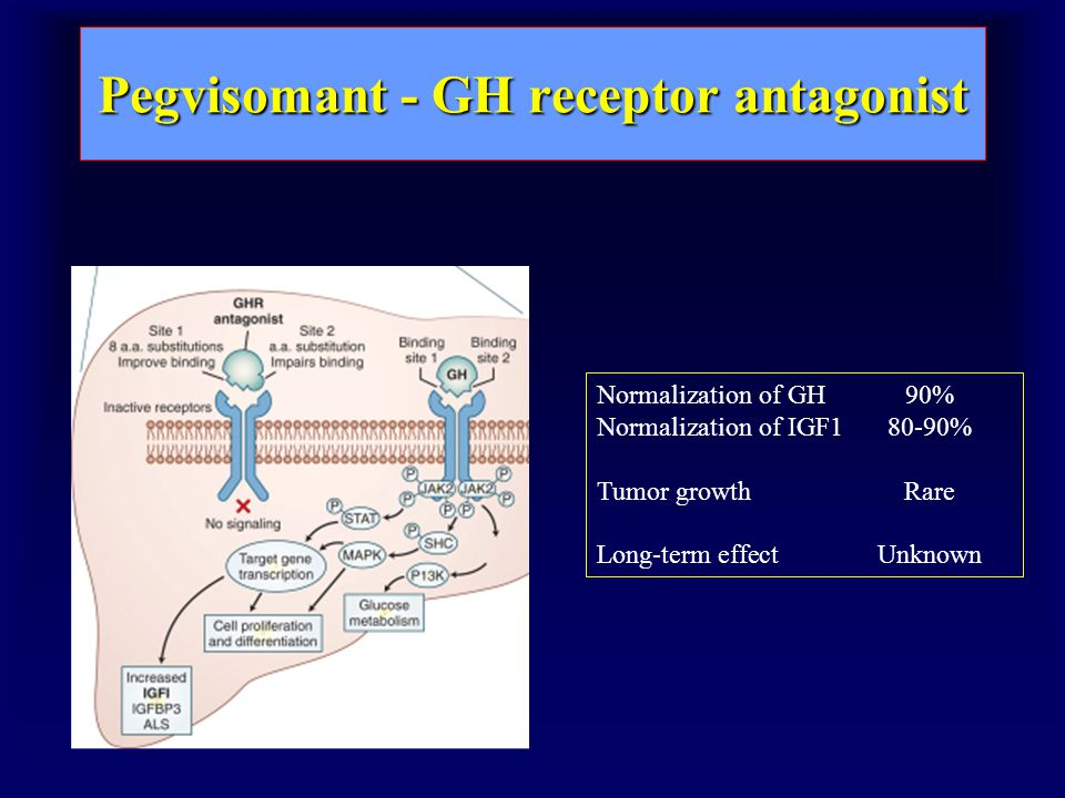 Pegvisomant - GH receptor antagonist Normalization of GH 90% Normalization of IGF180-90% Tumor growthRare Long-term effectUnknown