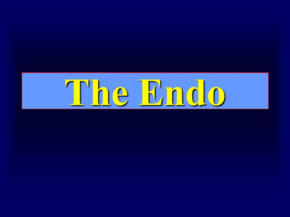 The End The Endo