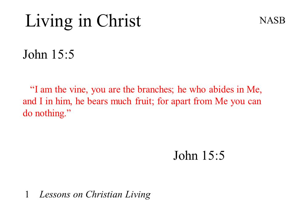 """Living in Christ John 15:5 NASB """"I am the vine, you are the branches; he who abides in Me, and I in him, he bears much fruit; for apart from Me you ca"""