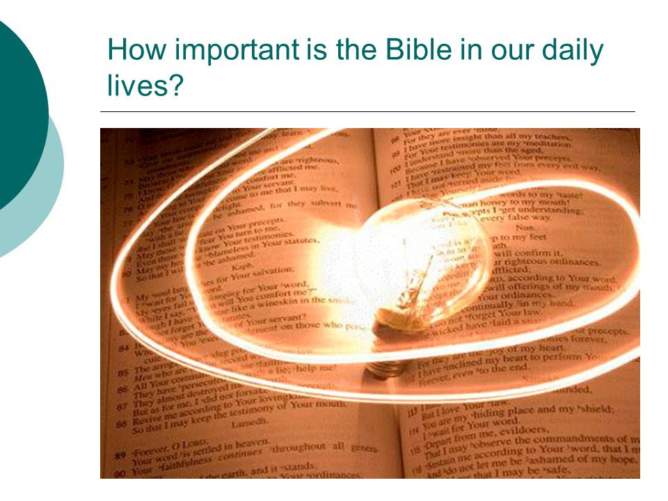How important is the Bible in our daily lives?