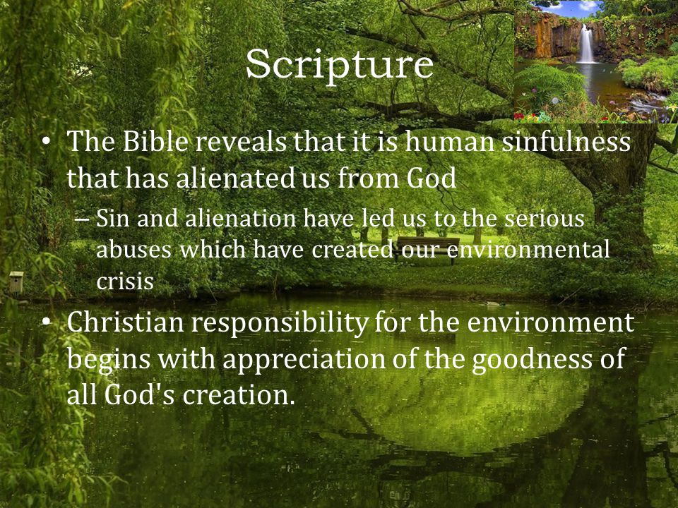 Scripture The Bible reveals that it is human sinfulness that has alienated us from God – Sin and alienation have led us to the serious abuses which have created our environmental crisis Christian responsibility for the environment begins with appreciation of the goodness of all God s creation.