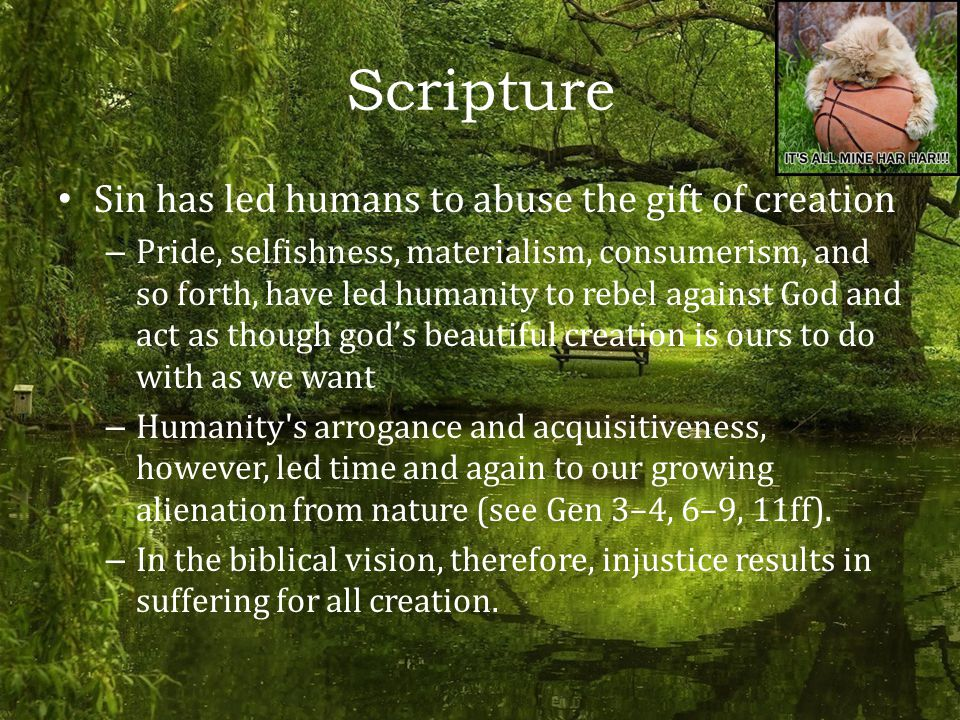 Scripture Sin has led humans to abuse the gift of creation – Pride, selfishness, materialism, consumerism, and so forth, have led humanity to rebel against God and act as though god's beautiful creation is ours to do with as we want – Humanity s arrogance and acquisitiveness, however, led time and again to our growing alienation from nature (see Gen 3–4, 6–9, 11ff).