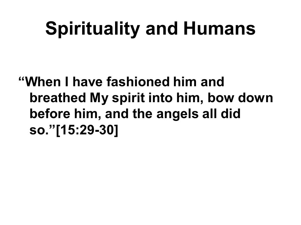 """Spirituality and Humans """"When I have fashioned him and breathed My spirit into him, bow down before him, and the angels all did so.""""[15:29-30]"""