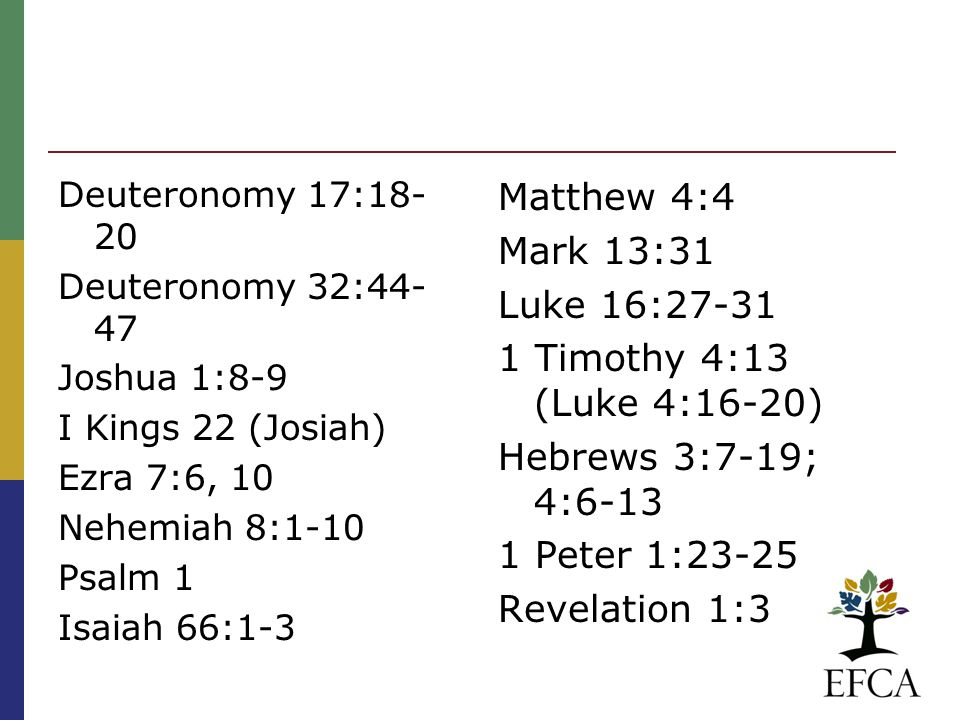 Peter Enns, I was always taught the Bible says X, but I just don't see it I was always taught the Bible says X, but I just don't see it I think it's because scripture doesn't line up very well with the conservative paradigm of scripture (some form of inerrancy ).