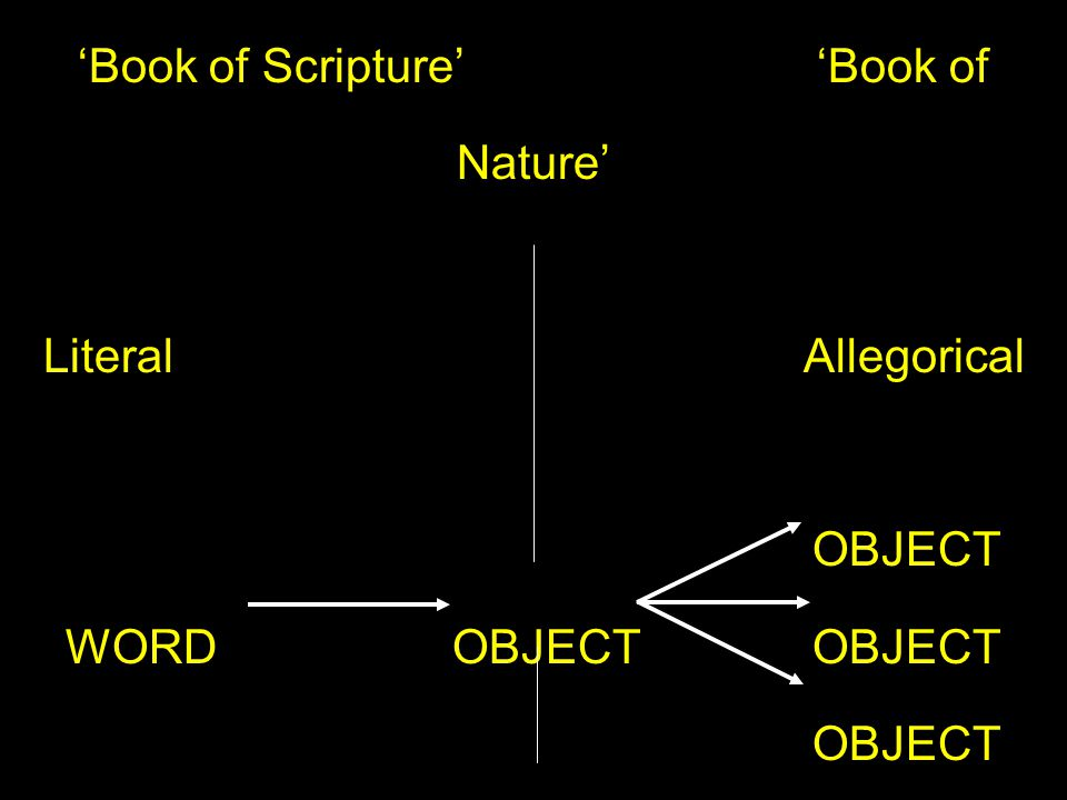 'Book of Scripture' 'Book of Nature' Literal Allegorical OBJECT WORD OBJECTOBJECT OBJECT