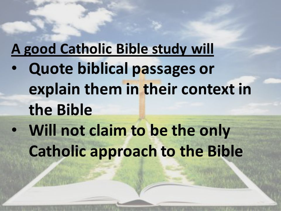 A good Catholic Bible study will Quote biblical passages or explain them in their context in the Bible Will not claim to be the only Catholic approach
