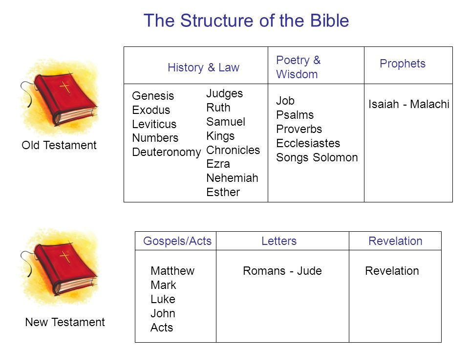The Structure of the Bible Old Testament History & Law Genesis Exodus Leviticus Numbers Deuteronomy Judges Ruth Samuel Kings Chronicles Ezra Nehemiah Esther Poetry & Wisdom Job Psalms Proverbs Ecclesiastes Songs Solomon Prophets Isaiah - Malachi New Testament Matthew Mark Luke John Acts Letters Romans - Jude RevelationGospels/Acts Revelation