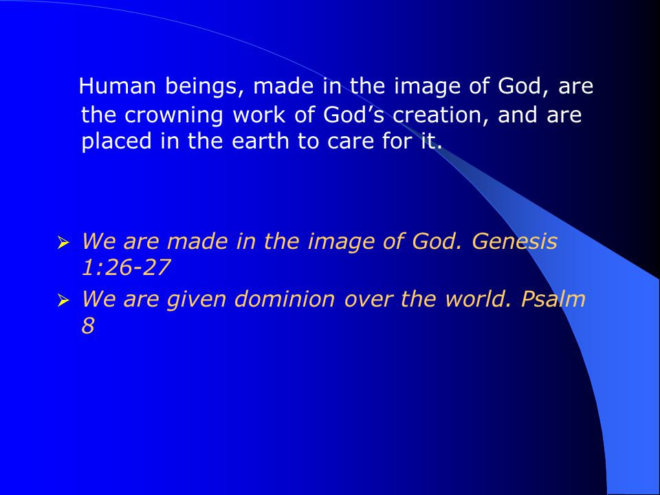 Human beings, made in the image of God, are the crowning work of God's creation, and are placed in the earth to care for it.