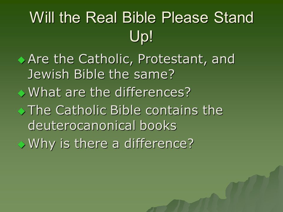 Will the Real Bible Please Stand Up.