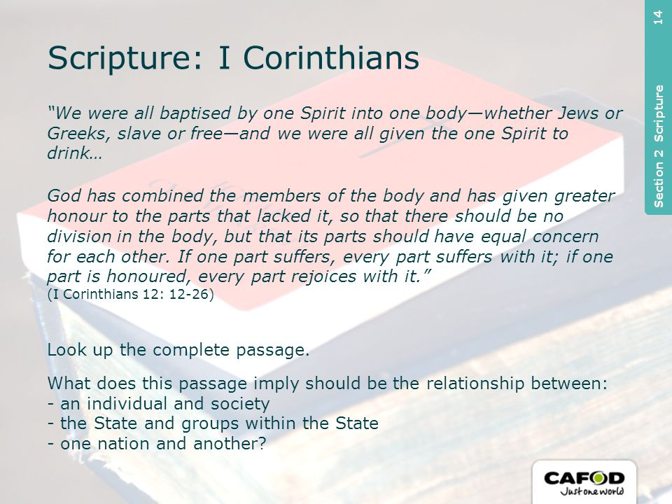We were all baptised by one Spirit into one body—whether Jews or Greeks, slave or free—and we were all given the one Spirit to drink… God has combined the members of the body and has given greater honour to the parts that lacked it, so that there should be no division in the body, but that its parts should have equal concern for each other.