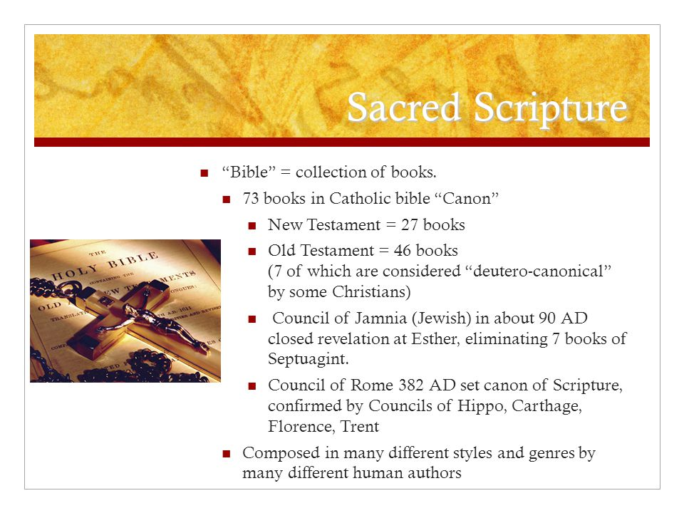 Sacred Scripture Bible = collection of books.