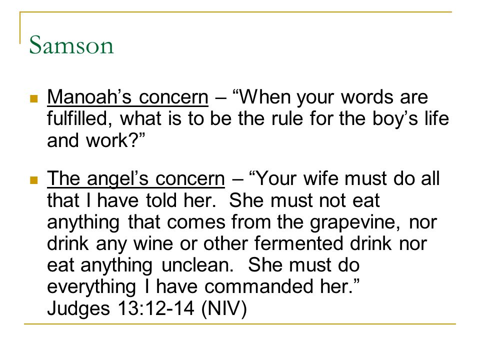 "Samson Manoah's concern – ""When your words are fulfilled, what is to be the rule for the boy's life and work?"" The angel's concern – ""Your wife must d"
