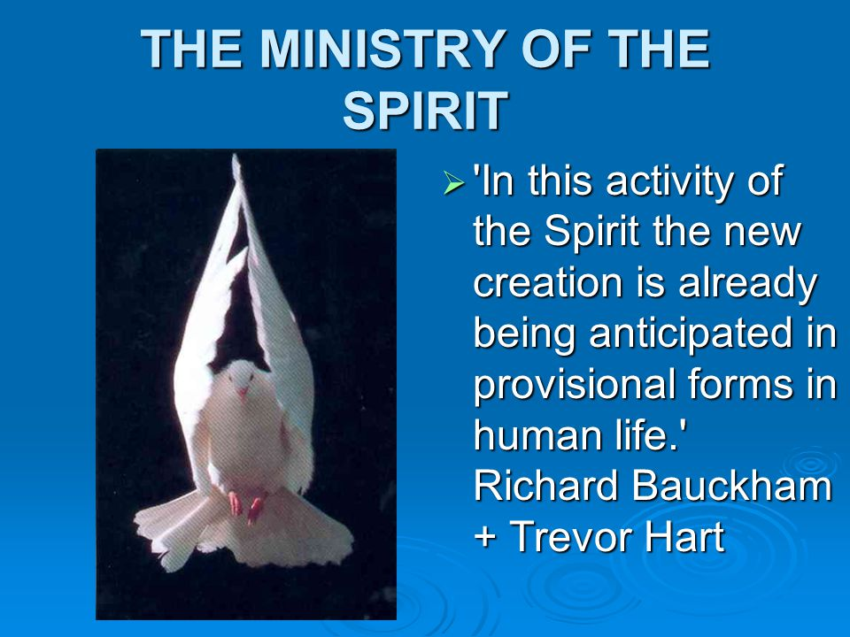 THE MINISTRY OF THE SPIRIT  In this activity of the Spirit the new creation is already being anticipated in provisional forms in human life. Richard Bauckham + Trevor Hart