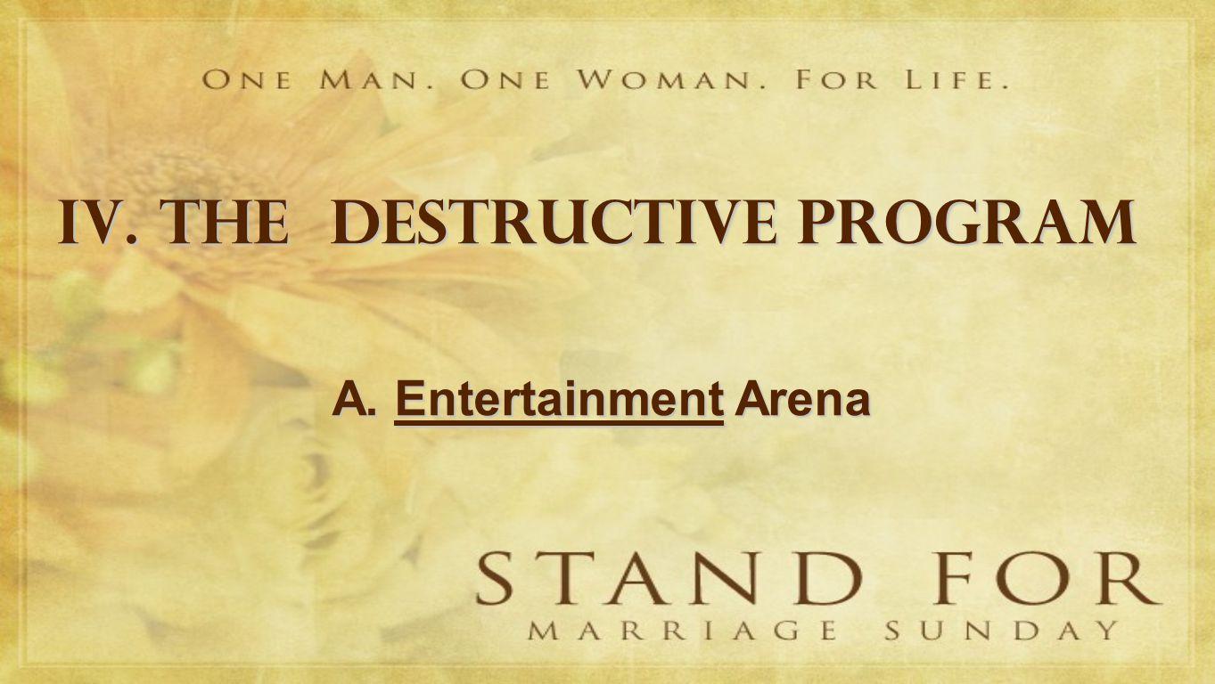 IV. THE DESTRUCTIVE PROGRAM A. Entertainment Arena