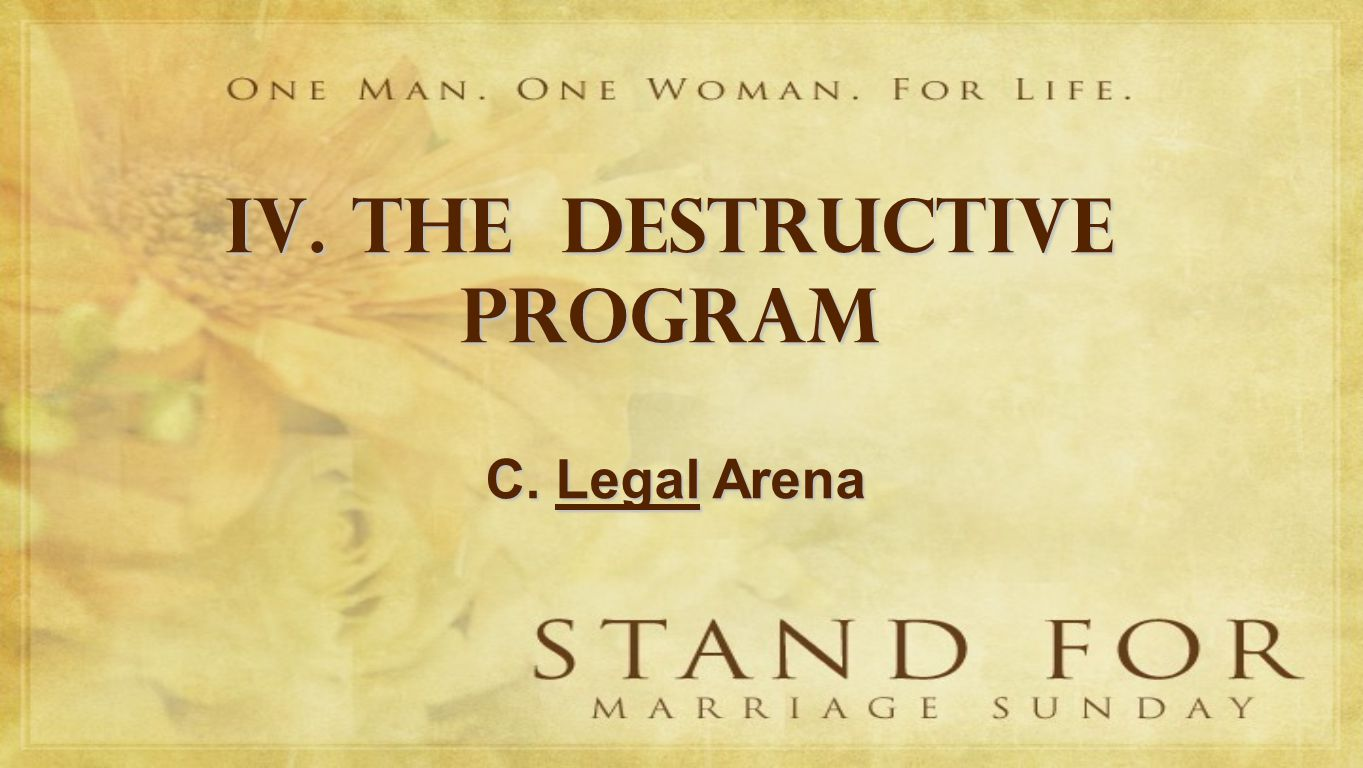 IV. THE DESTRUCTIVE PROGRAM C. Legal Arena
