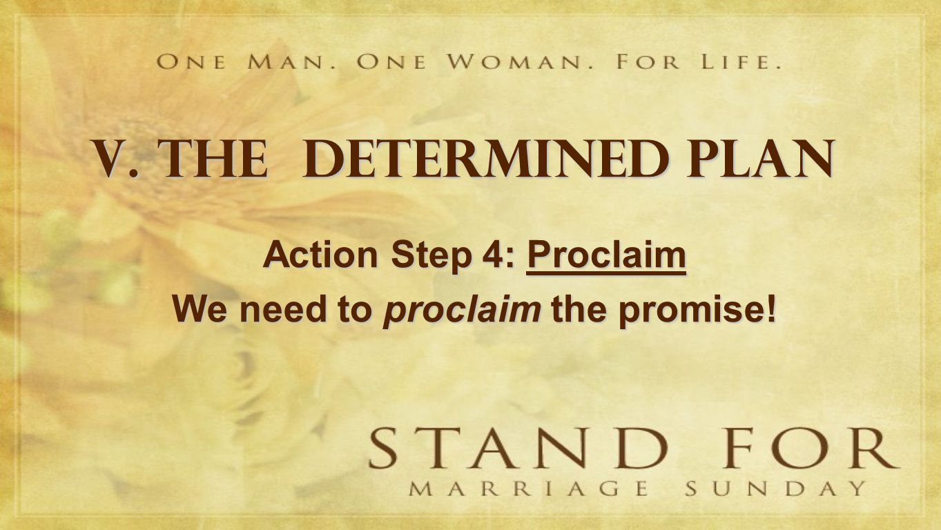 V. THE DETERMINED PLAN Action Step 4: Proclaim We need to proclaim the promise!