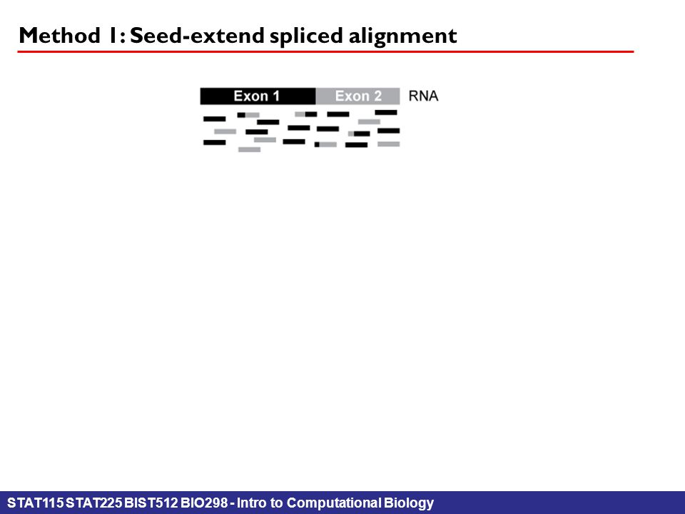 STAT115 STAT225 BIST512 BIO298 - Intro to Computational Biology Method 1: Seed-extend spliced alignment