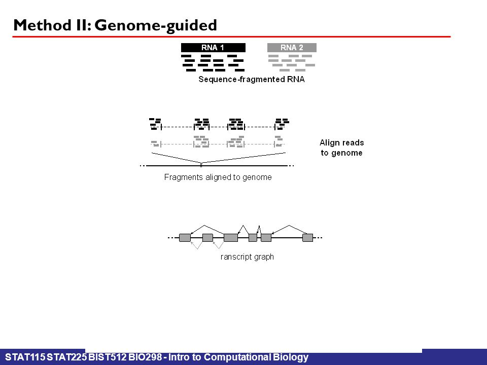 STAT115 STAT225 BIST512 BIO298 - Intro to Computational Biology Method II: Genome-guided