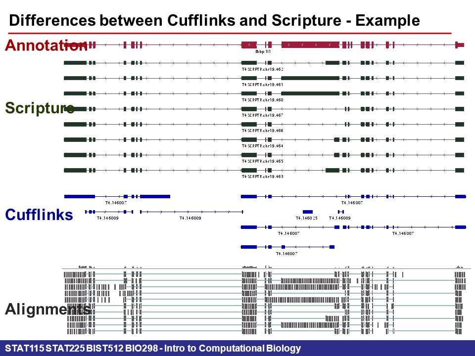 STAT115 STAT225 BIST512 BIO298 - Intro to Computational Biology Differences between Cufflinks and Scripture - Example Annotation Scripture Cufflinks Alignments
