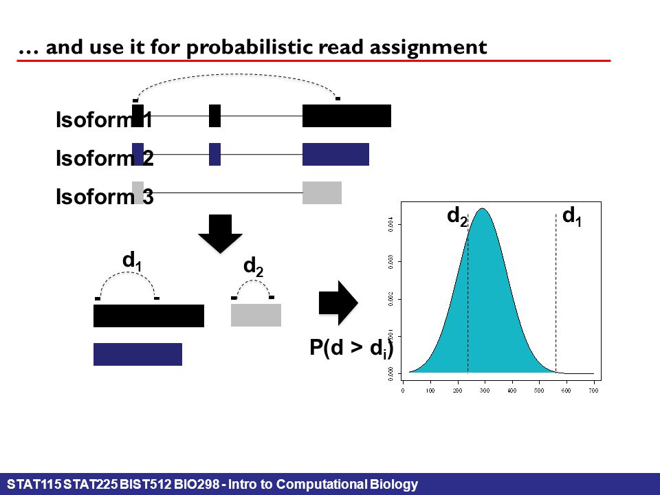 STAT115 STAT225 BIST512 BIO298 - Intro to Computational Biology … and use it for probabilistic read assignment Isoform 1 Isoform 2 Isoform 3 d1d1 d2d2 d1d1 d2d2 P(d > d i )