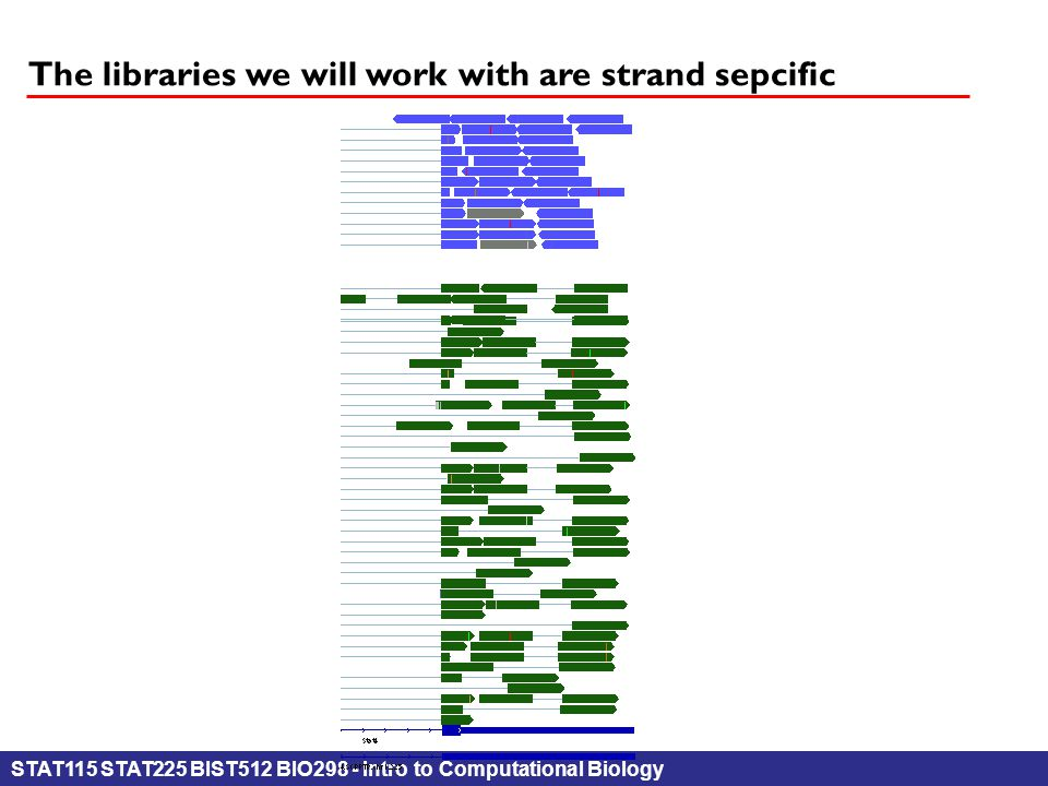STAT115 STAT225 BIST512 BIO298 - Intro to Computational Biology The libraries we will work with are strand sepcific