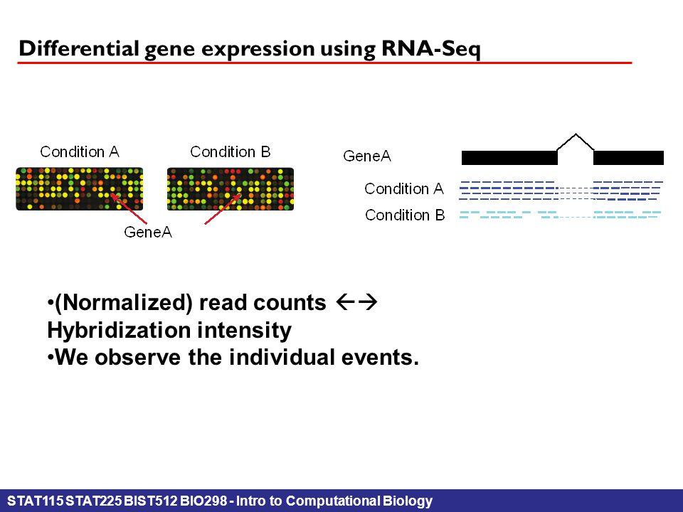 STAT115 STAT225 BIST512 BIO298 - Intro to Computational Biology Differential gene expression using RNA-Seq (Normalized) read counts  Hybridization intensity We observe the individual events.