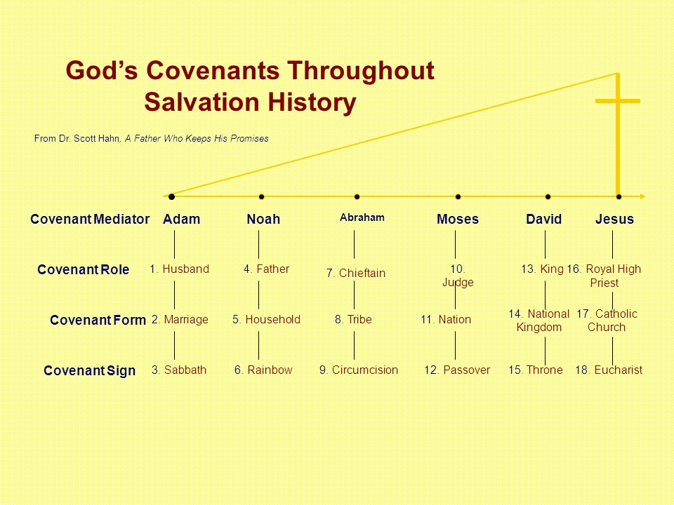 God's Covenants Throughout Salvation History AdamNoah Abraham MosesDavidJesusCovenant Mediator Covenant Role Covenant Form Covenant Sign 1.