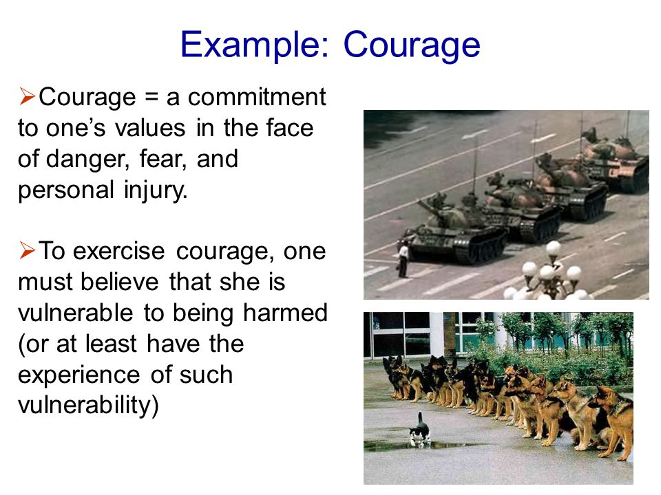 Example: Courage  Courage = a commitment to one's values in the face of danger, fear, and personal injury.
