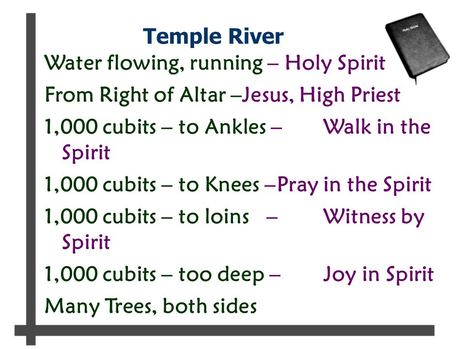 Temple River Water flowing, running – Holy Spirit From Right of Altar –Jesus, High Priest 1,000 cubits – to Ankles –Walk in the Spirit 1,000 cubits – to Knees –Pray in the Spirit 1,000 cubits – to loins –Witness by Spirit 1,000 cubits – too deep –Joy in Spirit Many Trees, both sides