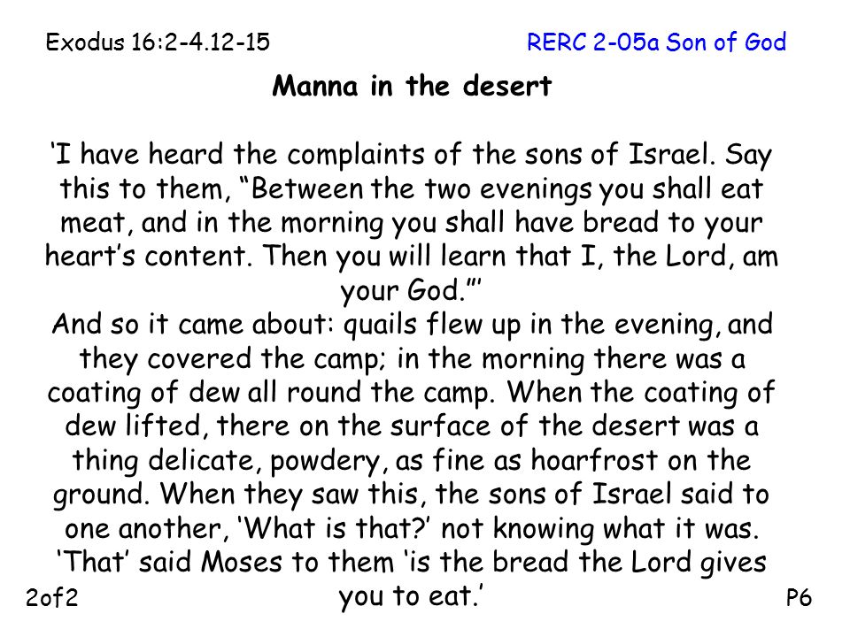 """Manna in the desert 'I have heard the complaints of the sons of Israel. Say this to them, """"Between the two evenings you shall eat meat, and in the mor"""